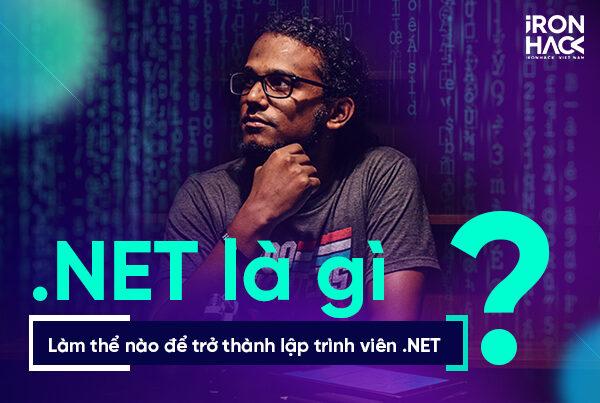 NET là gì